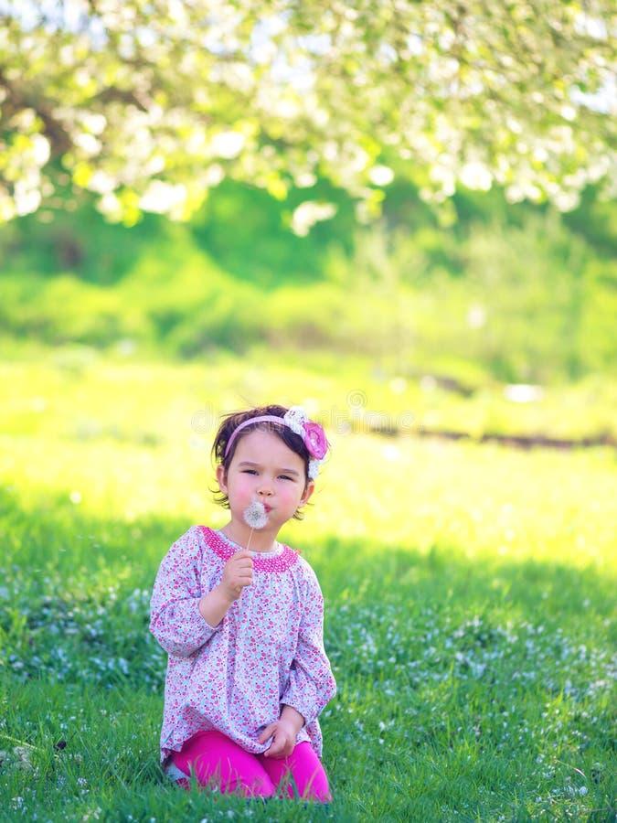 Lyckligt barn som utomhus blåser maskrosen i vår royaltyfri fotografi