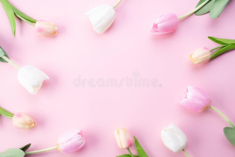Lyckligt begrepp f?r moderdag Bästa sikt av rosa tulpanblommor i ram på rosa pastellfärgad bakgrund Lekmanna- l?genhet arkivfoto