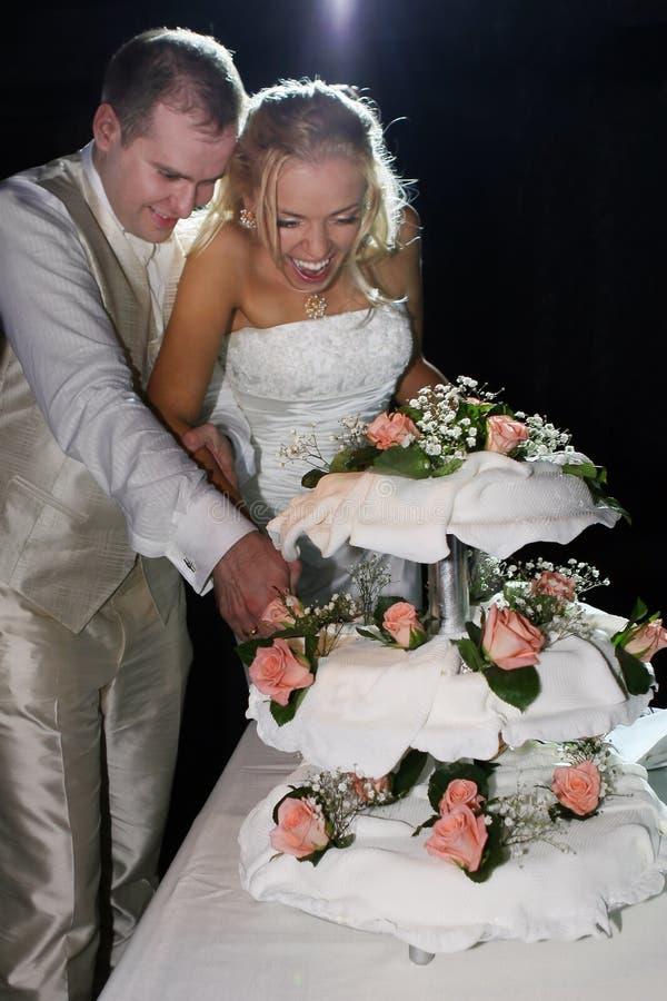 lyckligt bröllop för cakepar royaltyfri foto