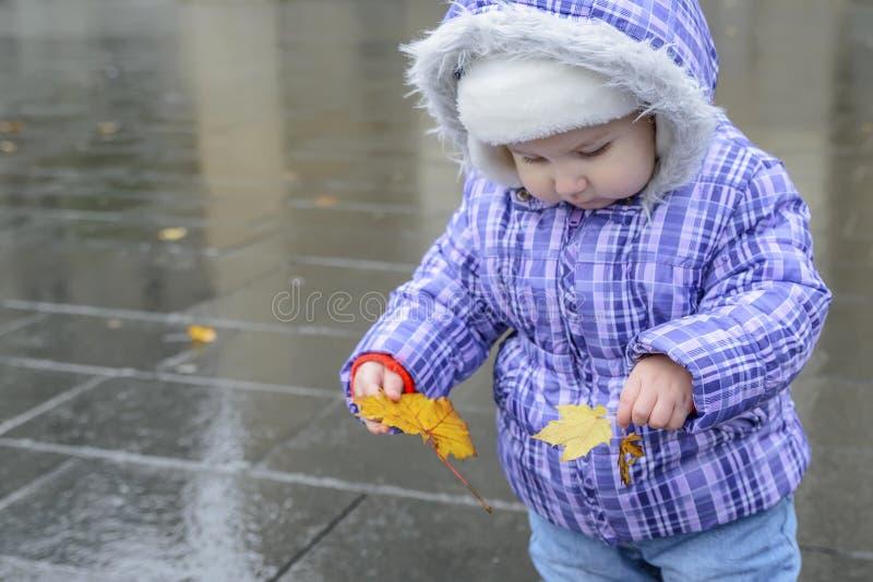Lyckligt glat barn som rymmer ett höstblad i händer royaltyfri fotografi