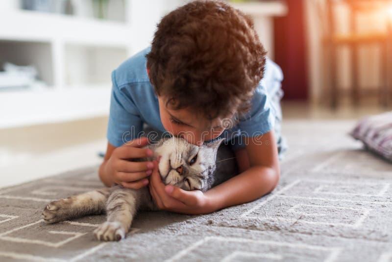 Lyckligt litet barn som hemma spelar med grå brittisk shorthair på matta royaltyfria bilder