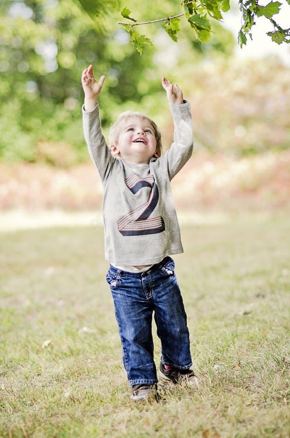 Lyckligt litet barn som når upp royaltyfri fotografi