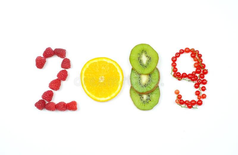 Lyckligt nytt år 2019 av frukt och bär på den vita bakgrunden arkivfoto