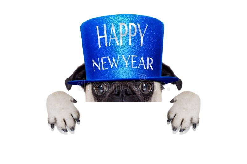 lyckligt nytt år för hund royaltyfri bild