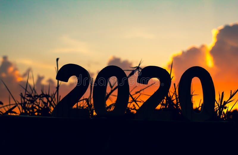 Lyckligt nytt år för kontur 2020 av tränumret på gräs med bakgrund för natur för himmel- och molnskymning härlig royaltyfri bild