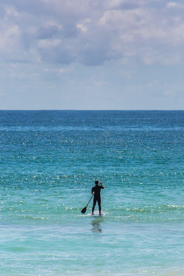 Lycksaligt ställnings-uppskovellogi i det blåa havet royaltyfri bild