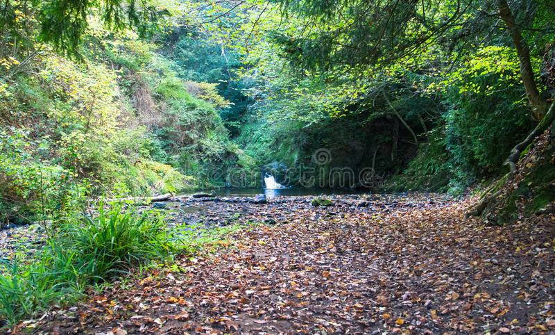 LYD-Loch-Wasserfall in England stockfotografie