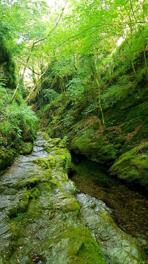 Lydfordkloof, Dartmoor Devon royalty-vrije stock fotografie