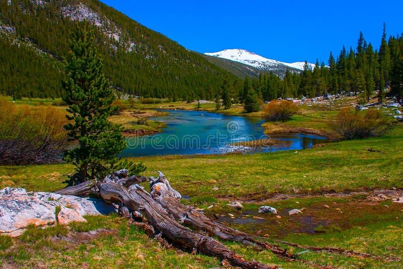 Lyell rozwidlenie Tuolumne rzeka wzdłuż Pacyficznego grzebienia śladu, Yosemite obraz royalty free