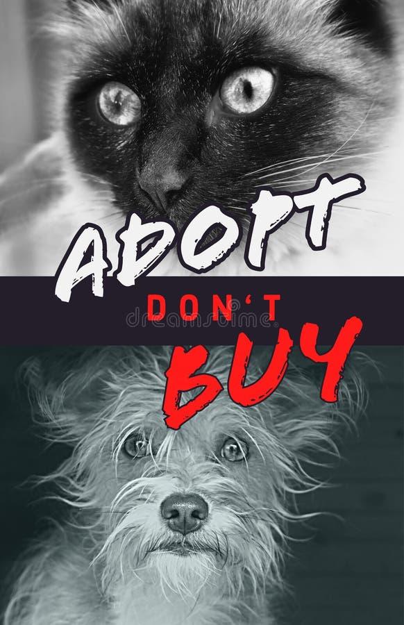 Lyer, collage para el bienestar animal con dos animales en blanco y negro fotografía de archivo