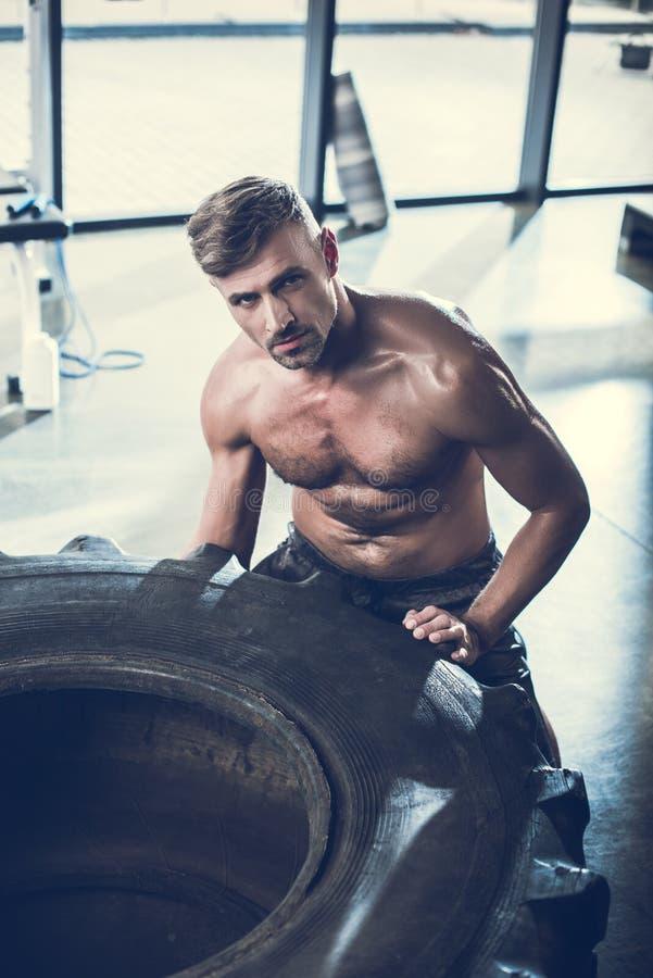 lyftande gummihjul för stilig shirtless idrottsman, i idrottshall och att se fotografering för bildbyråer