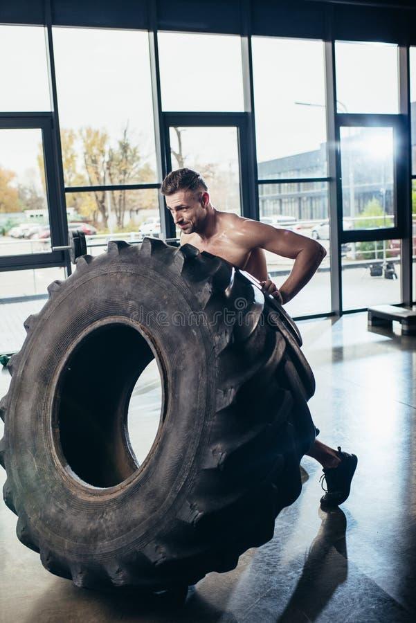 lyftande gummihjul för stilig shirtless idrottsman royaltyfri foto