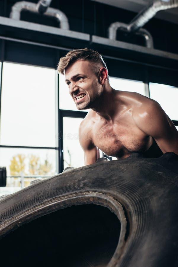 lyftande gummihjul för stilig shirtless idrottsman och grimacing fotografering för bildbyråer