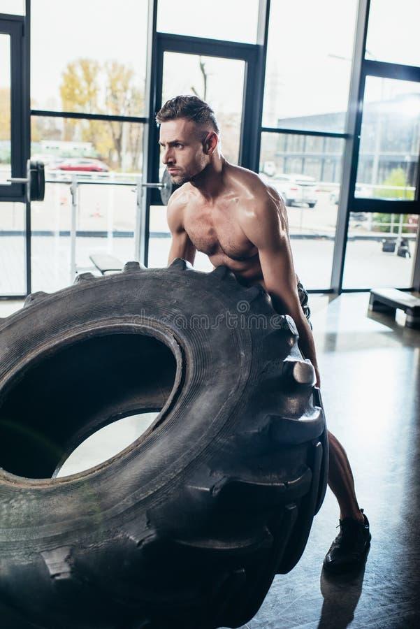 lyftande gummihjul för stilig shirtless svettig idrottsman royaltyfria bilder