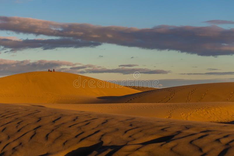 Lying on the desert dunes in Gran Canaria at sunset royalty free stock image