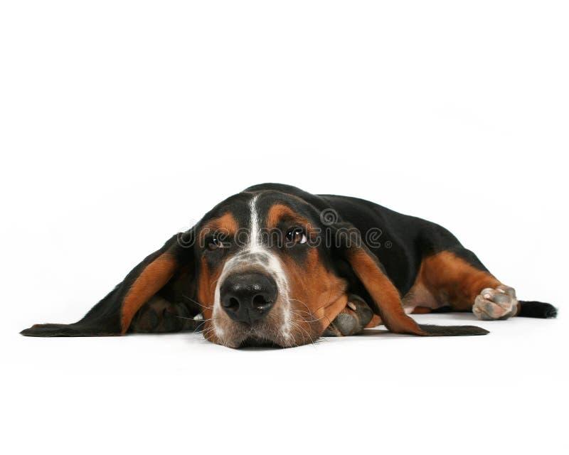 Lying down stock image