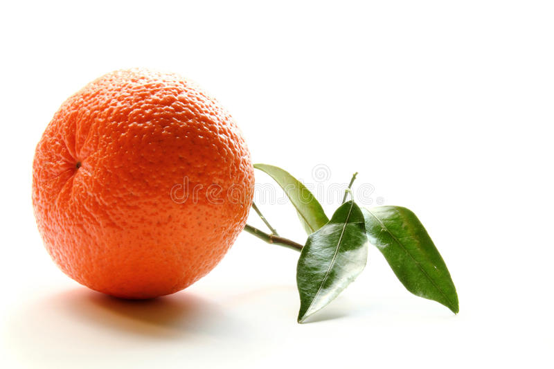 Orange with leaf royalty free stock photography