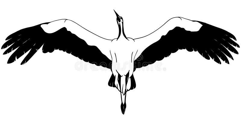 Lying White Stork stock illustration