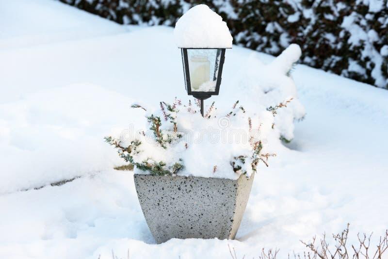 Lykta i Snow royaltyfria bilder