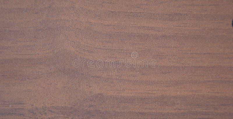 Lykta mahogny, slutna naturliga ritningar Stäng bild royaltyfria bilder