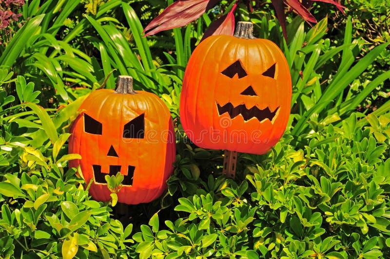 Lyktor för halloween stålar o