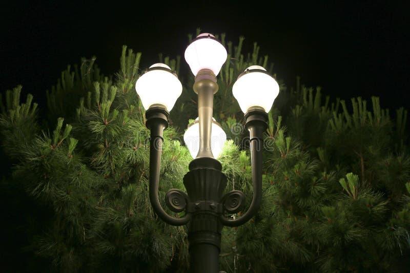 Lyktor på natten i stadsmitten Nice, Frankrike royaltyfri fotografi