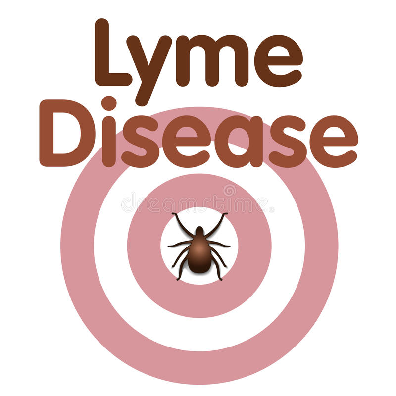 Lyme choroba, cwelich, byka oka wysypka ilustracja wektor
