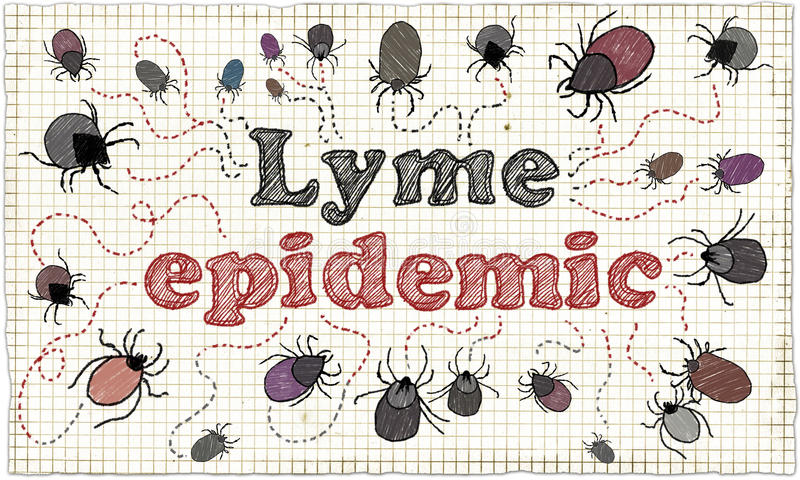 Lyme epidemische Illustratie vector illustratie