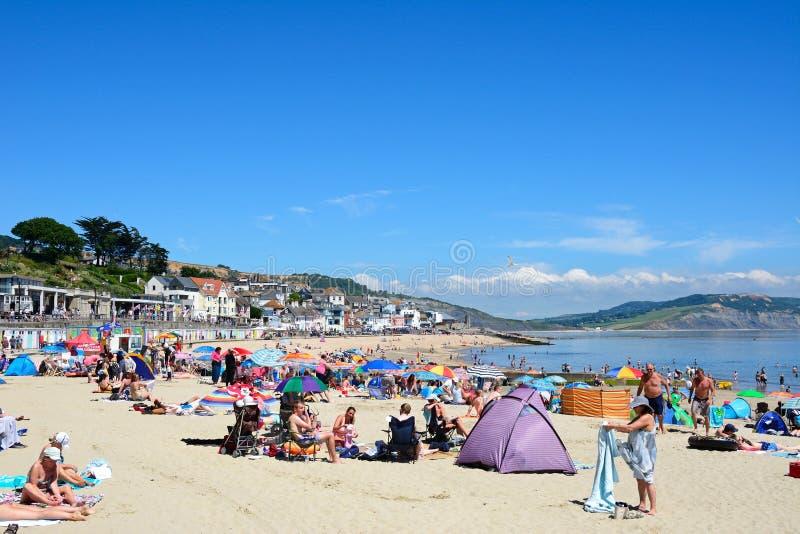 Lyme Regis Beach arkivfoto