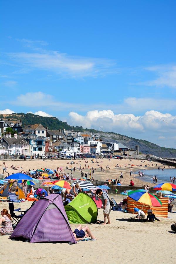 Lyme Regis Beach royaltyfri bild