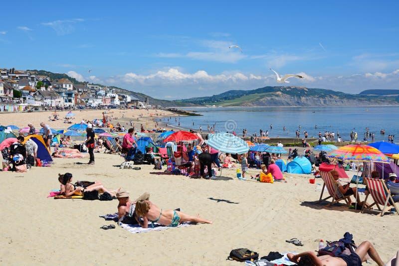 Lyme Regis Beach royaltyfri fotografi