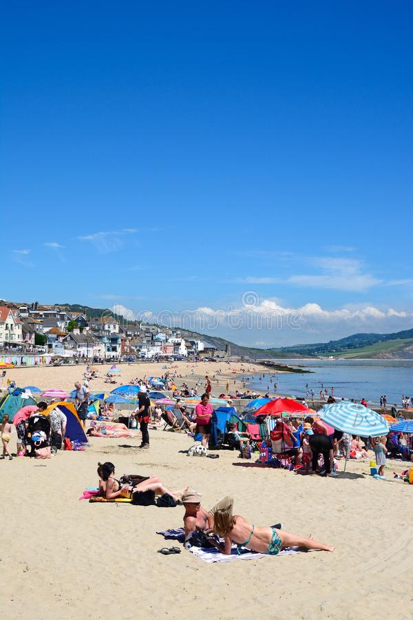 Lyme Regis Beach arkivbilder