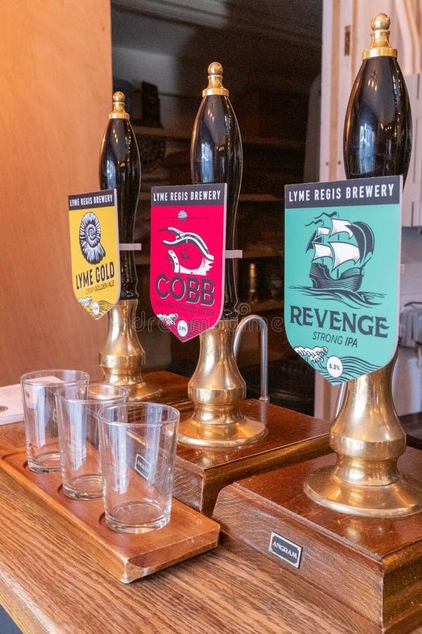 Lyme Regis, Dorset, Inglaterra, fevereiro, 24, 2019: Bombas da cerveja dentro do Lyme Regis Brewery, com vidros vazios do demonst foto de stock