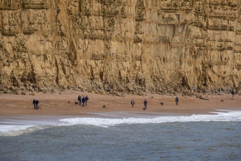 LYME REGIS, DORSET/UK - 22 ΜΑΡΤΊΟΥ: Ιουρασική ακτή σε Lyme σχετικά με στοκ εικόνες