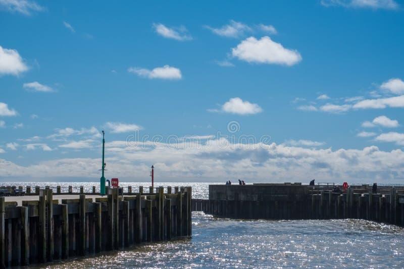 LYME REGIS, DORSET/UK - MARS 22: Hamnväggar i Lyme Regis I arkivbild