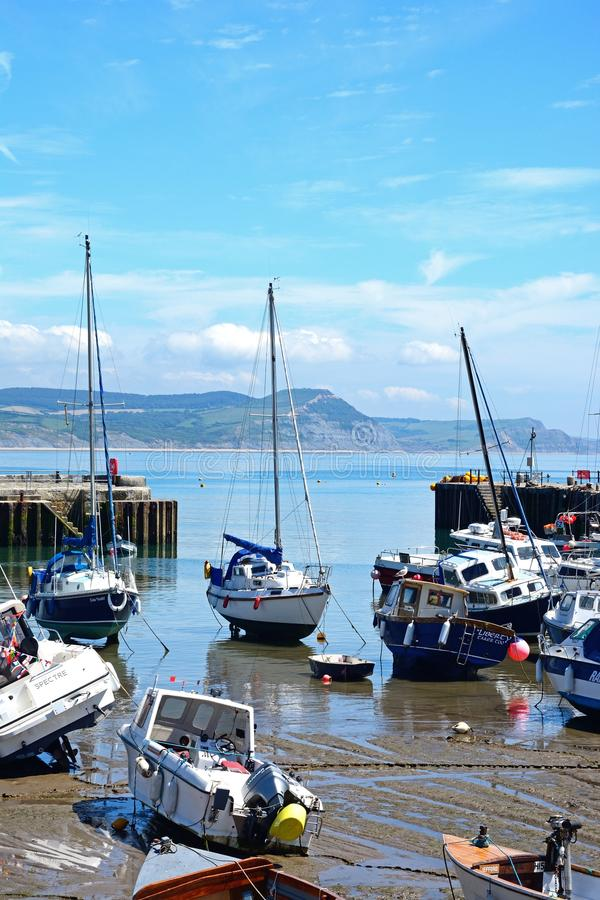 Lyme Regis hamn royaltyfria bilder