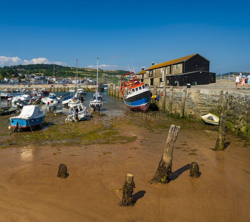 Lyme Regis hamn och Cobb royaltyfria foton