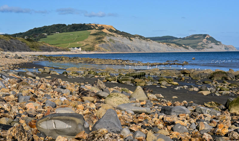 Lyme Regis Harbour. The beautiful jurassic Lyme Regis beach, full of fossils within rocks royalty free stock photography