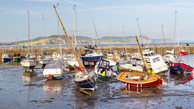 Lyme Regis Harbour Dorset arkivbild