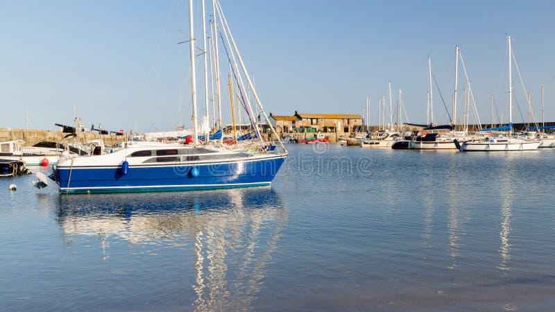 Lyme Regis Harbour Dorset royaltyfri fotografi