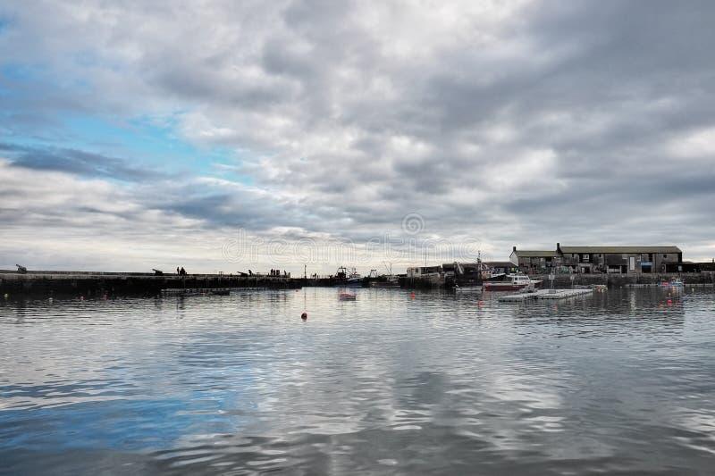 Lyme Regis Harbour - Januari royaltyfri foto
