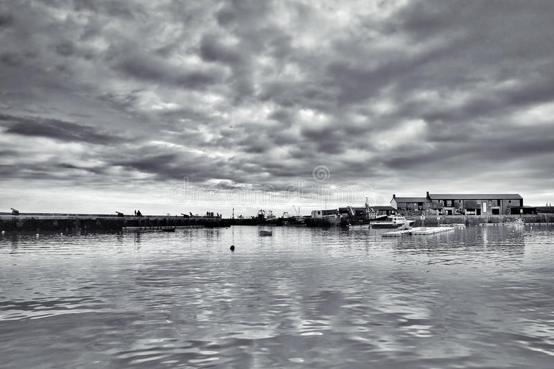 Lyme Regis Harbour - Januari royaltyfri bild