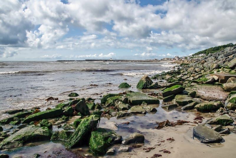 Lyme Regis At Low Tide arkivbild