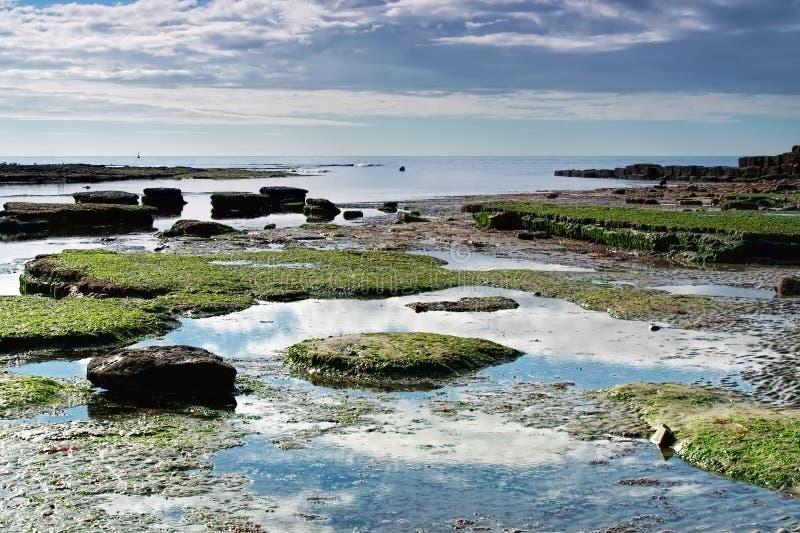 Lyme Regis Seascape - Oktober royaltyfri foto