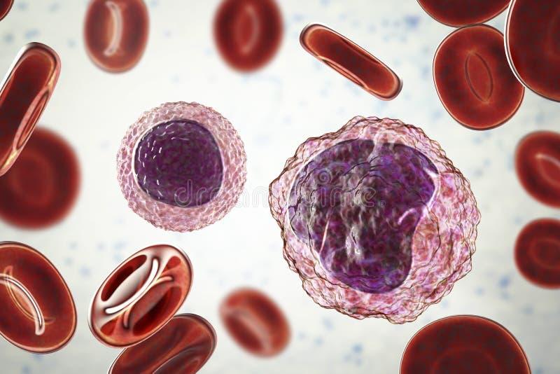 Lymphocyte et monocyte entourés par les globules rouges illustration stock