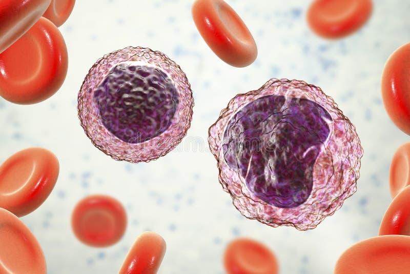 Lymphocyte et monocyte entourés par les globules rouges illustration libre de droits