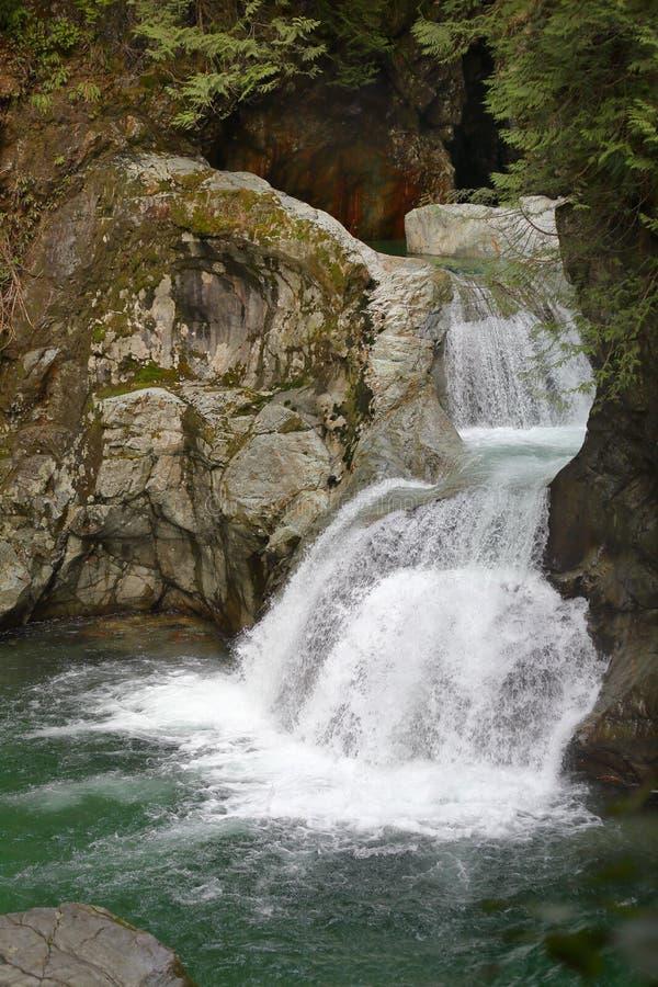 Lynn Canyon Park, Twin Falls, Vancôver norte fotografia de stock