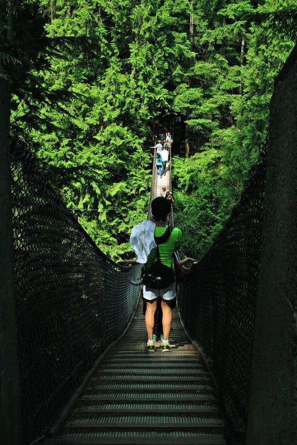 Lynn Canyon Suspension Bridge, North Vancouver B.C., Canada stock photo