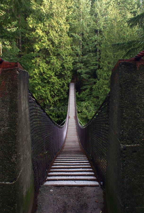 Download Lynn Canyon Suspension Bridge, Vancouver, Canada Stock Image - Image: 12910563