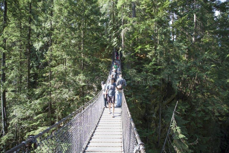 Lynn cayon park rope bridge stock image